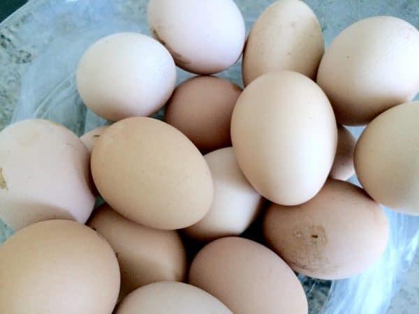נחשף לול עם מכונה לזיוף חותמות המוטבעות על ביצים