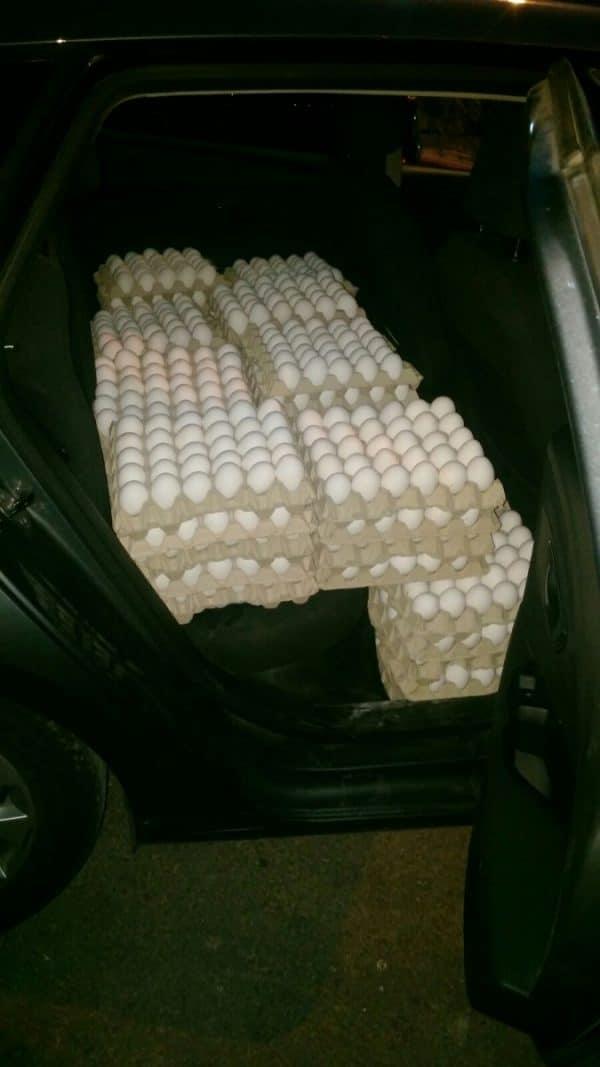 סוכל ניסיון להברחת 4,200 ביצים משטחי הרשות הפלשתינאית שנועדו לשיווק בירושלים
